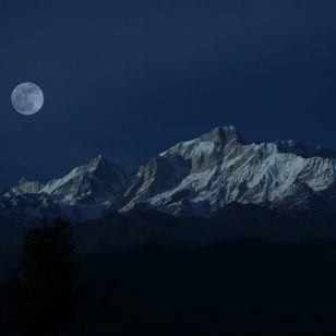 photography of moon